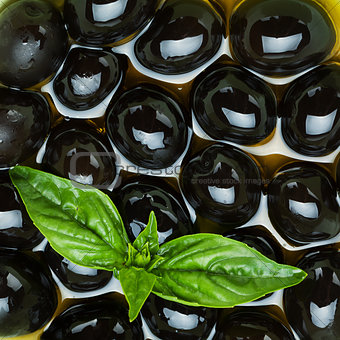 Black olives and basil