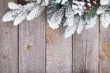 Fir tree on wooden board