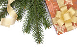 Christmas gift box and fir tree