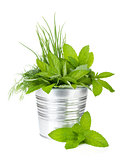 Fresh herbs in metal bucket