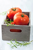 fresh tomatoes in box