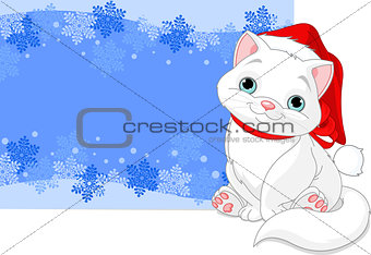 Christmas cat background