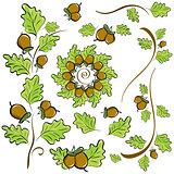 design elements of oak leaves and acorns