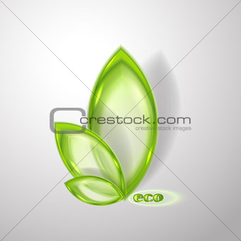 Abstract eco background with transparent leaves