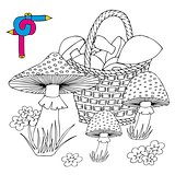 Coloring image mushrooms
