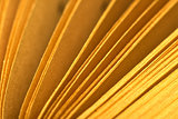 Book pages macro