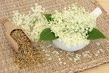 Meadowsweet Herb