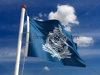 Charleston City Flag