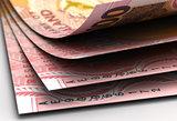 New Zealand Dollar Closeup