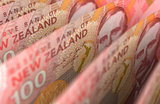 New Zealand Dollar Closeup