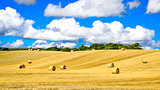 Wheat field with straw bales and blue cloudy sky