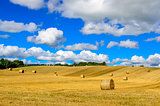 Curvy barley field with straw bales and blue cloudy sky