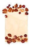 Notepaper with chestnuts