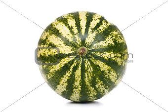 Watermelon's bottom