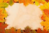 Autumn leaves as border