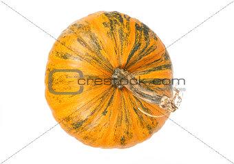 top view of fresh orange pumpkin