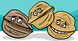walnuts nuts cartoon illustration