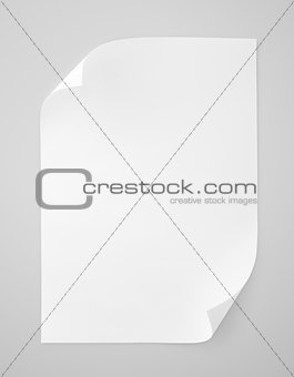 Blank sheet of white paper