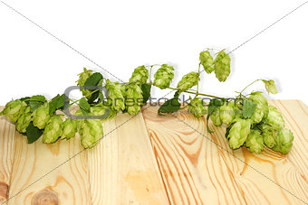branch of hops on a wooden table