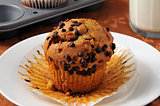 Freshly baked chocolate chip muffin