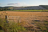 Countryside Summer landscape of open gate into freshly harvested