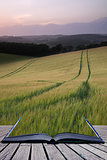 Creative concept pages of book Summer landscape image of wheat field