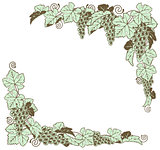 Grape vine border design