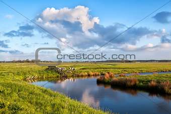 beautiful sky over pastoral with sheep