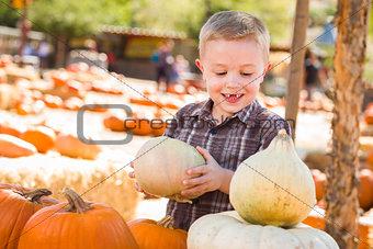 Little Boy Gathering His Pumpkins at a Pumpkin Patch