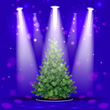 Christmas tree in the spotlight