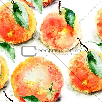 Watercolor illustration of Oranges