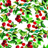 Seamless pattern with red berry