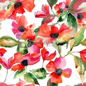 Watercolor illustration with Poppy flowers