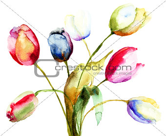 Watercolor painting of Tulips flowers