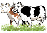 2 happy cows