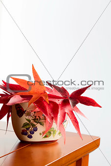 Autumn leaves in a ceramic vase