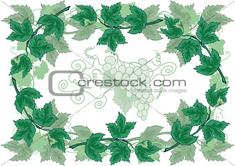 Abstract frame from grapevines