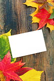 Autumn leaves and card on old wooden wall.