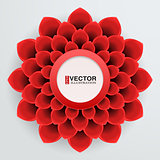 Background red paper flower