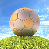 Soccer Ball Gold Silver