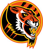 Angry Tiger Side Retro