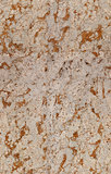 spotted seamless stone texture