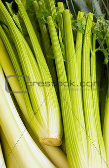 green rhubarb in street market