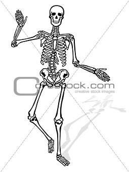 waving skeleton character