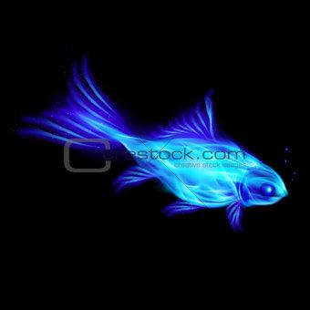 Fire fish.