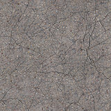 Cracked Concrete. Seamless Tileable Texture.