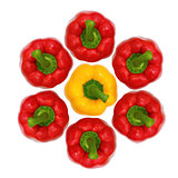 Top view, red and yellow sweet  bell pepper isolated on white ba