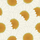 Chamomile retro seamless pattern