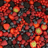 Berries background