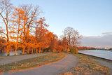 St. Petersburg. Autumn park at sunset
